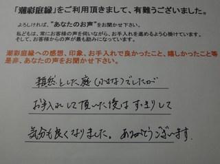 DSC01138.JPG
